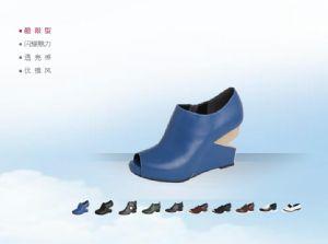百丽鞋业网站建设